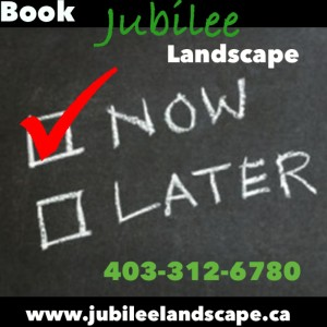 Book Jubilee Landscape Now
